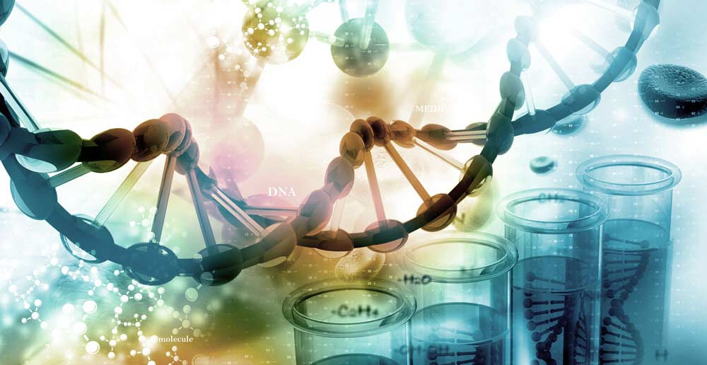 Ielts nhung tran – ielts writing sample Scientific research
